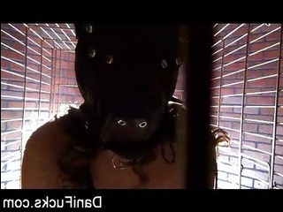 Порно видео трансляции чат