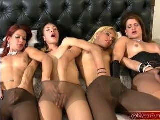 Порно hd трансы в колготках